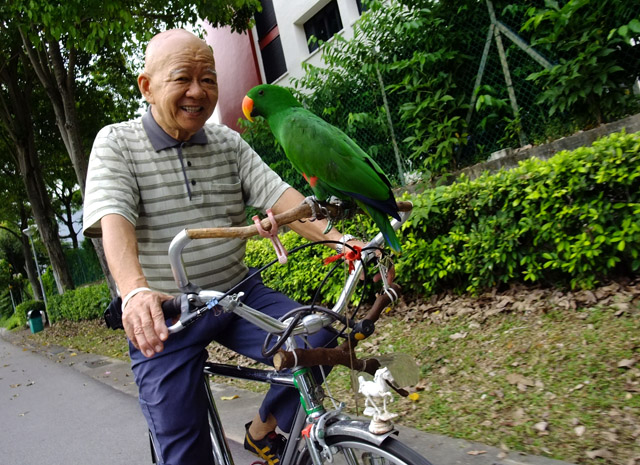 Uncle Lau cycling with his parrot
